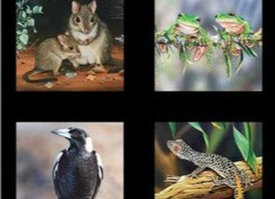Wildlife art Multi Maggie