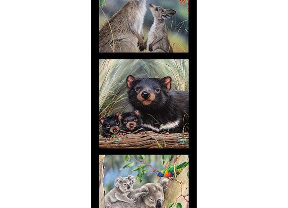 Koala Tassie Devil Wallaby Wildlife art