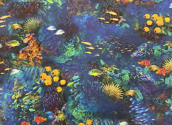 Ocean Reef RK