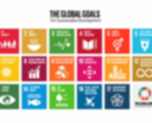 the-global-goals-grid-color-495x400.png