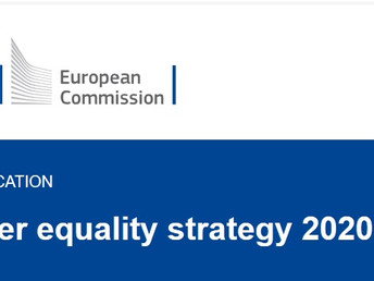 Gender Equality for Men in Finland NGO's comments on EU's Gender Equality Strategy for 2