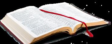 bible_PNG8.png