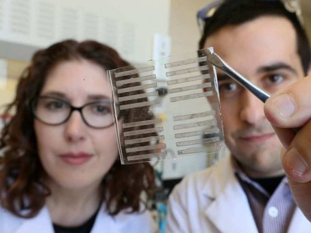 Latest news on the research ongoing in our group on stretchable and self-healable materials