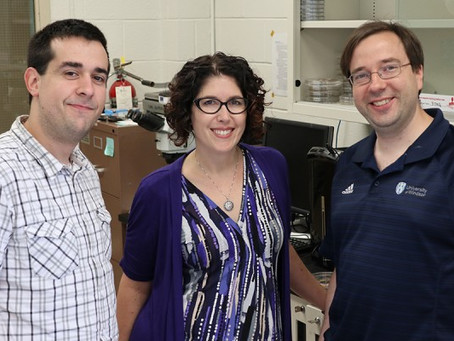 UWindsor to create a Chemistry Research Centre on Organic Materials