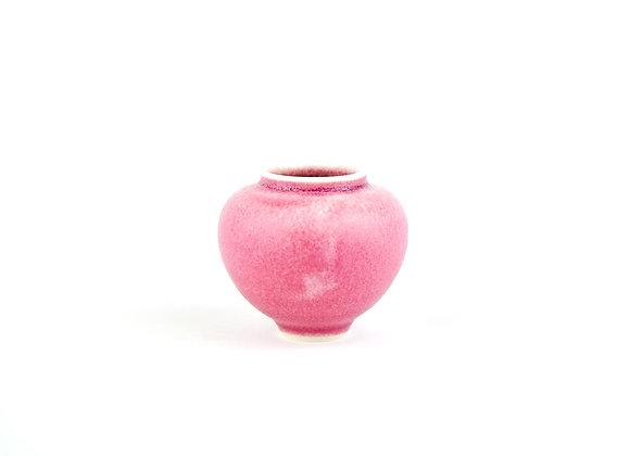 No. M52 Yuta Segawa Miniature Pot Medium