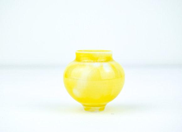 No.160  Yuta Segawa Miniature Pot Medium