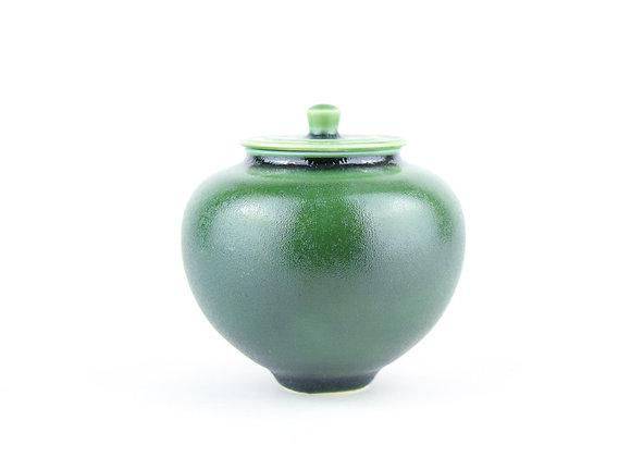 No. N266 Yuta Segawa Miniature Pot & Cover Extra Large