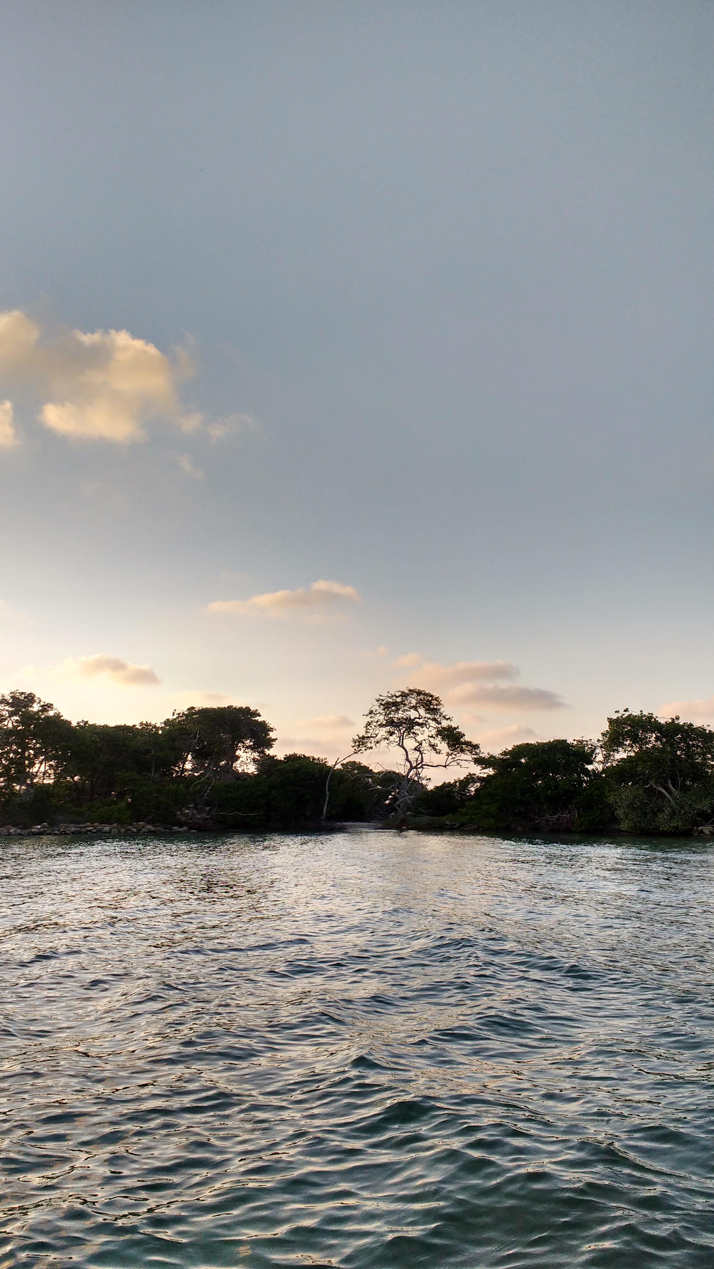 vista mar (129)