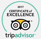 AIM Snowports TripAdvisor Certificate of Excellence