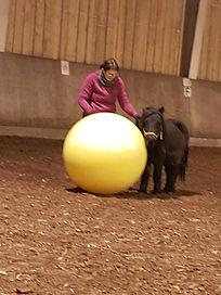 Wenn_der_Ball_größer_als_das_Pony.jpg
