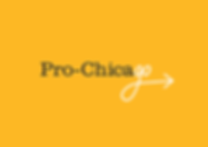 ProChicago branding, print and digital collateral
