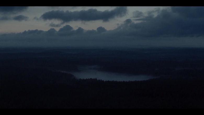 Trailer de la película Perros Callejeros