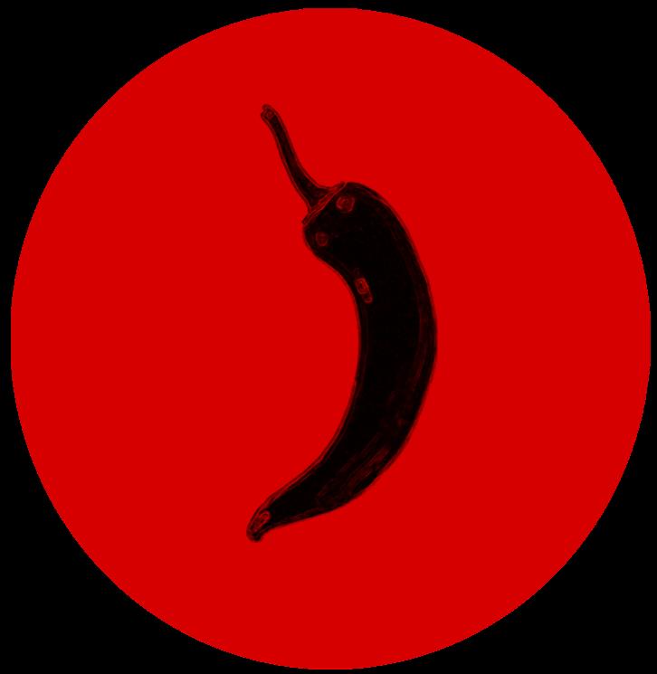 Logo Guajillo Films