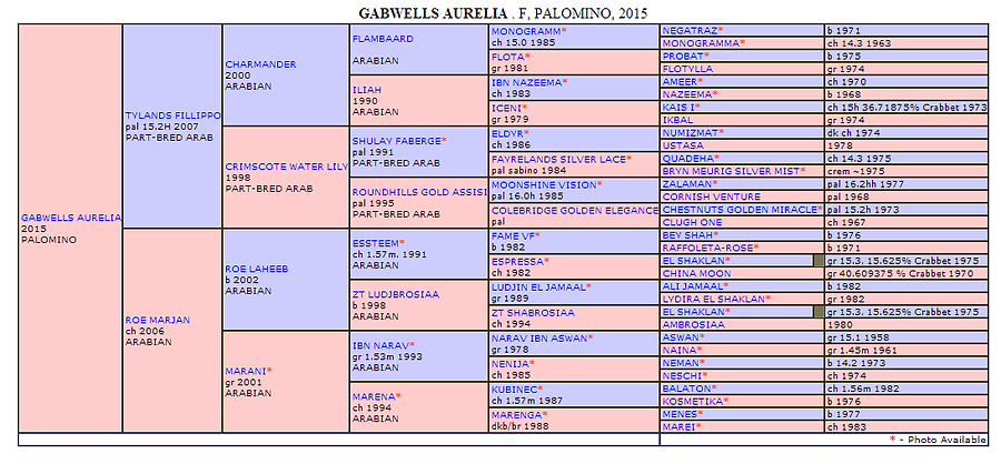 Gabwells Aurelia Pedigree