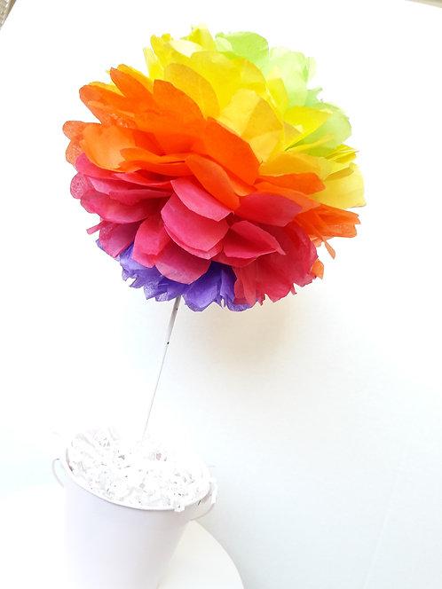 Rainbow Tissue Poms