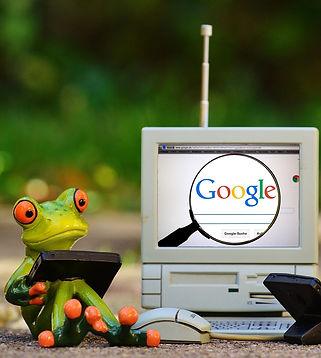 frogs-1037868_1920.jpg