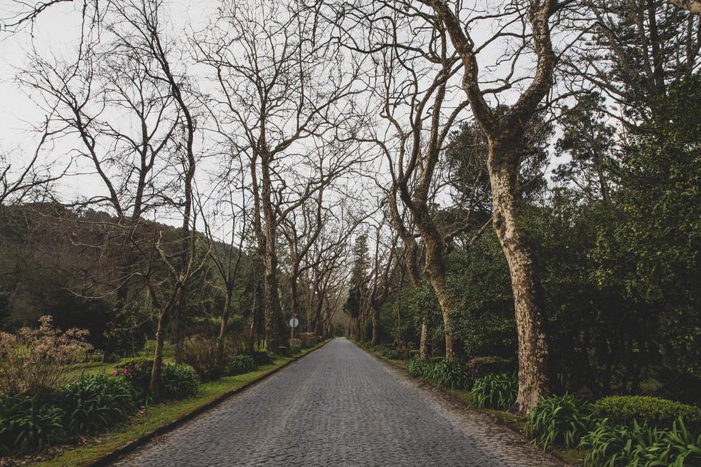 Açores-1.jpg