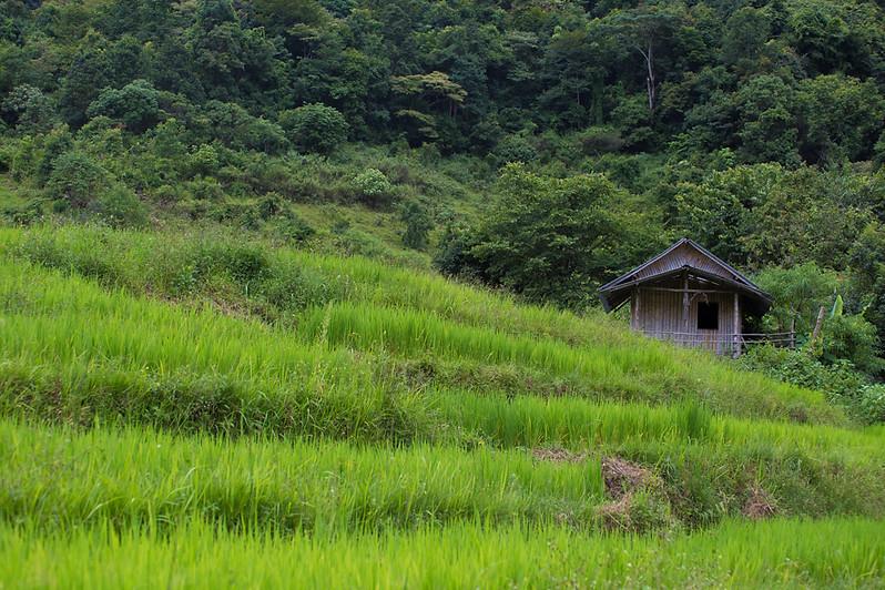 indochina960px-115.jpg
