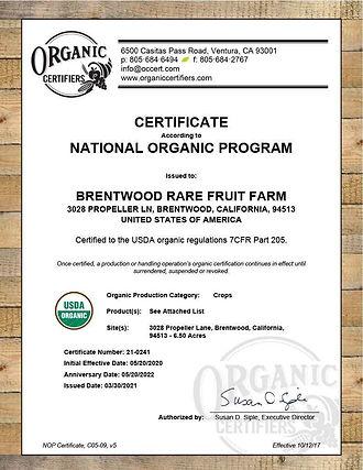 Organic certificate photo.jpg