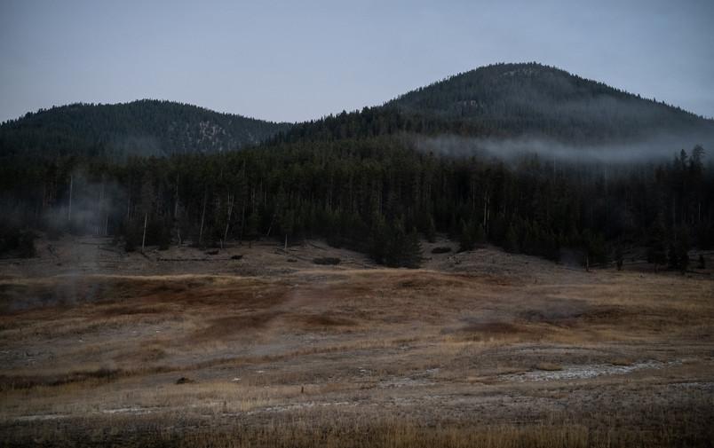 Yellowstone National Park, 2020