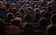 publikmedlemmar