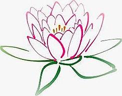 Lotus_edited_edited_edited.jpg