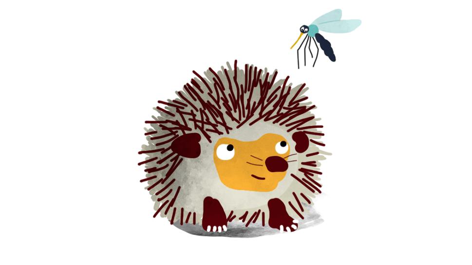 Pindsvin og myg