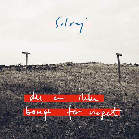 single_coverart_duerikkebangefornoget.jp