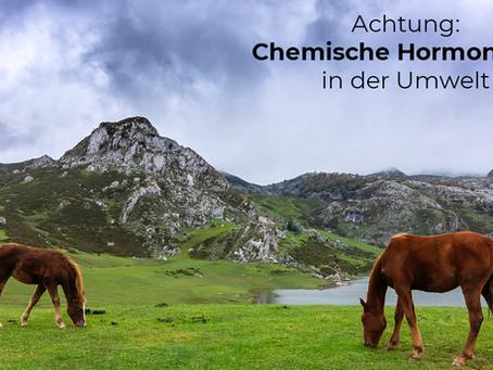 Schutz vor chemischen Hormonkillern aus der Umwelt!