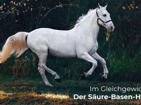 """Übersäuerung beim Pferd - die Bedeutung des """"Säure-Basen-Haushalts"""""""