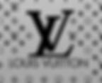 Louis Vuitton sponsors You Matter