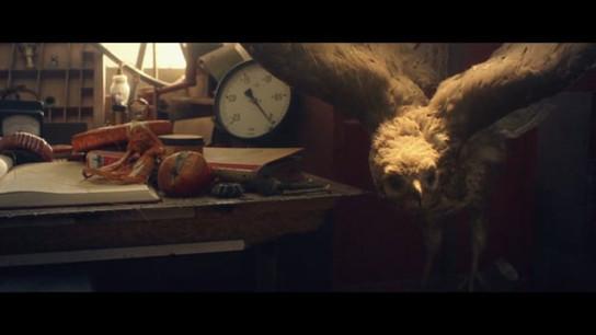 Leonardo | Short Film