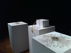 Mycelium Network #02