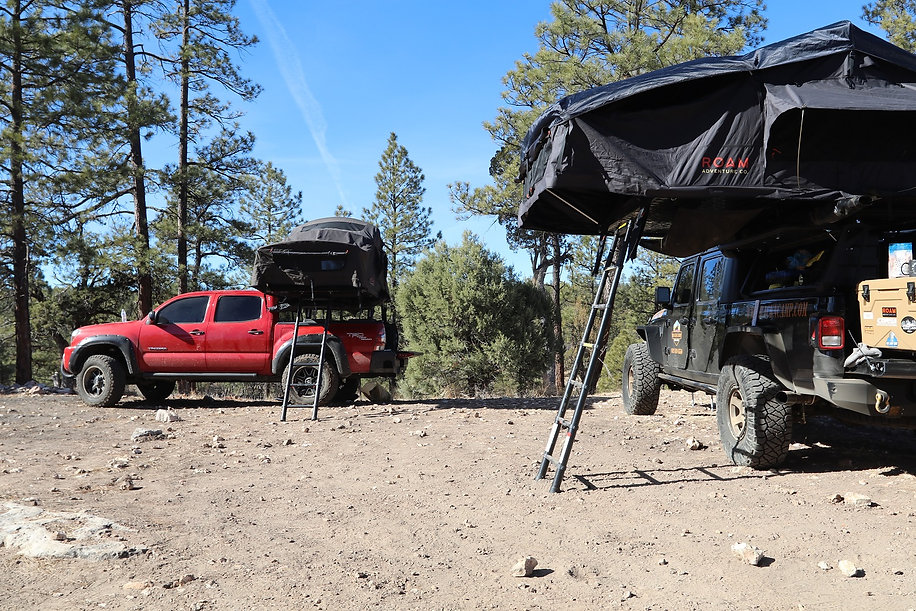 RoofTop Tents In Forest Camping Pickup T