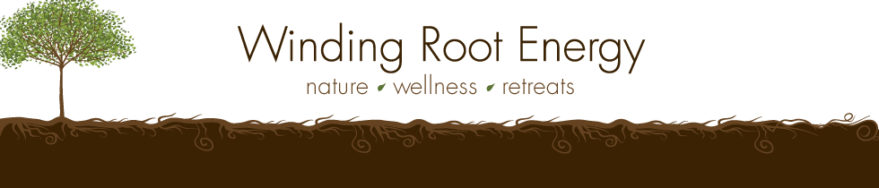 Winding Root Energy | Kansas City | Energy Healing | Retreats | Meditation | Wellness | Mindfulness