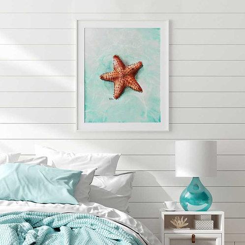 Affiche Étoile de mer