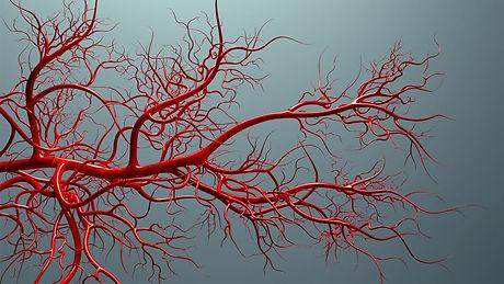 Blood-Vessel 1440x810.jpg