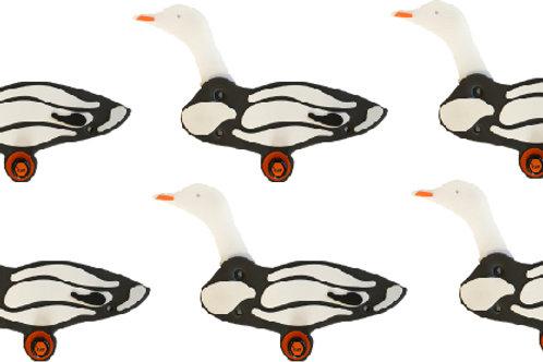 Snow Goose Sixes