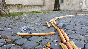 birds3.jpg