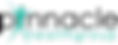 Current Logo - Black.png