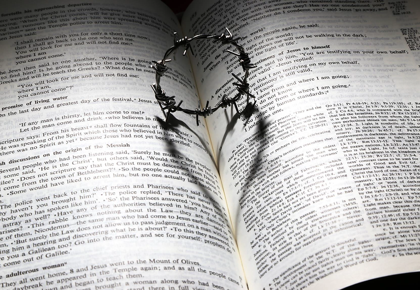 Bible and Barbwire