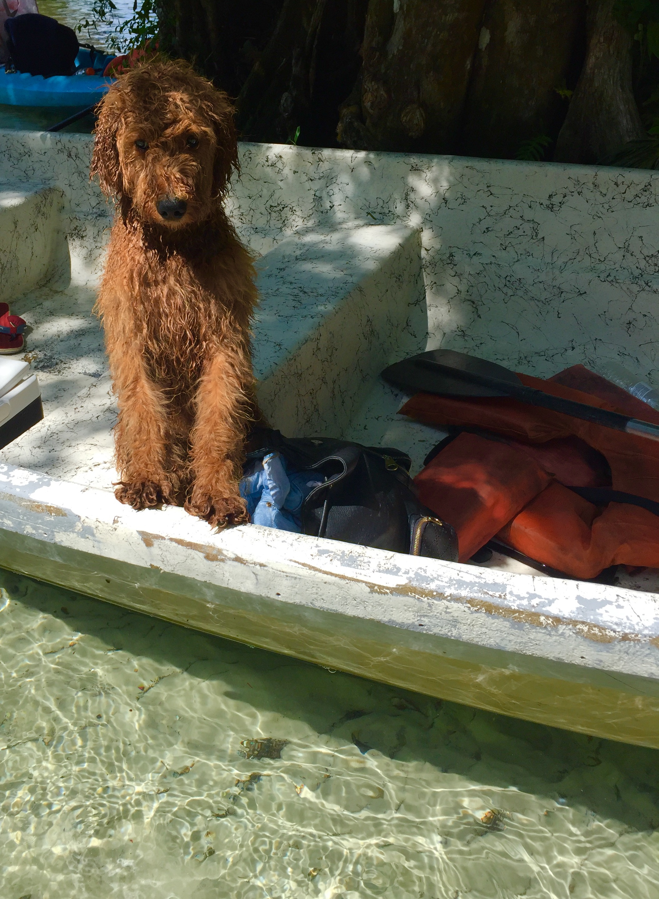 He loves the water and going boating