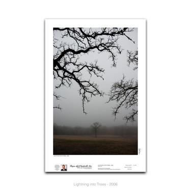 11-018 LightningIntoTrees.jpg
