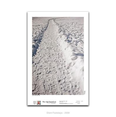 12-039 Silent Footsteps.jpg