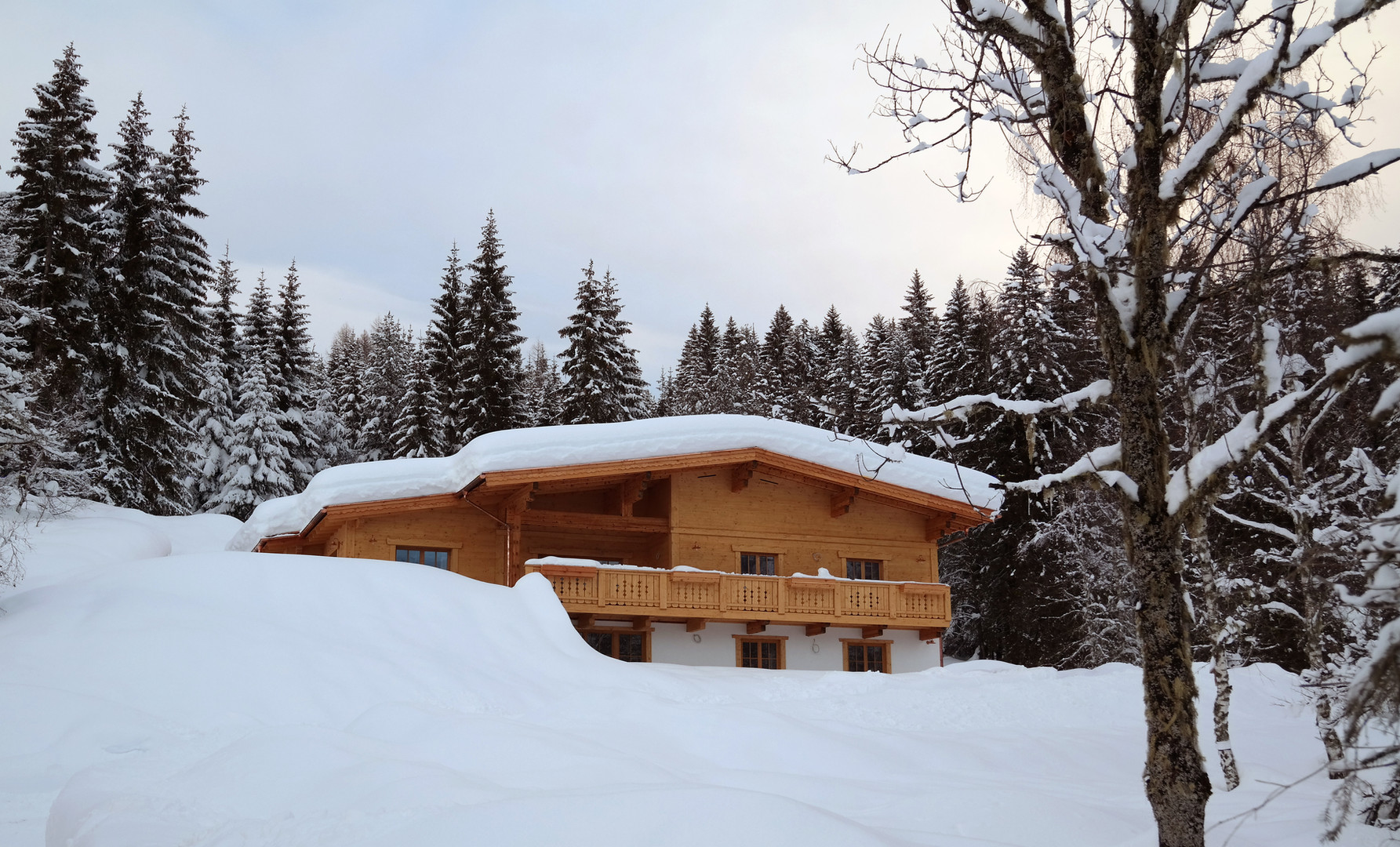 huckfeld im schnee.jpg