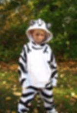 handmade halloween costume tiger