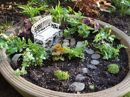 My Tiniest Garden