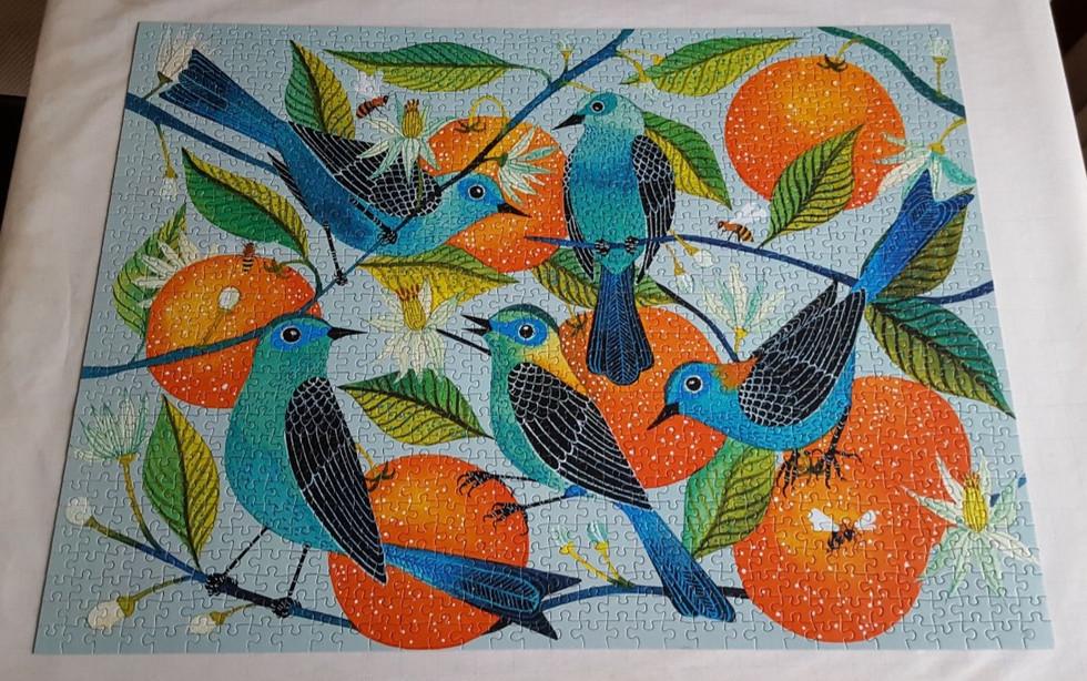 Naranjas by Geninne Zlatkis from Galison
