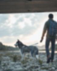 Education canine educateur canin Angers Brissac Maine et Loire 49