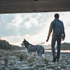 ペットと散歩